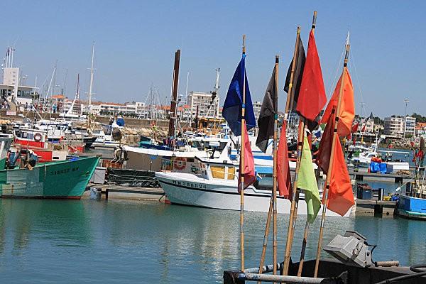 port de pêche royan-3-
