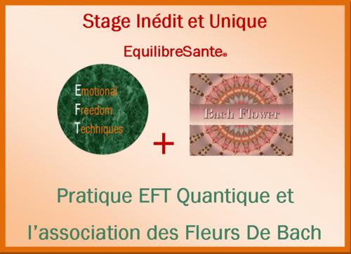Stages EFT EquilibreSante®