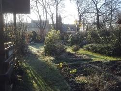 Nous avons eu un jour de neige. Le lendemain c'était fini mais le sol est bien gelé au jardin.
