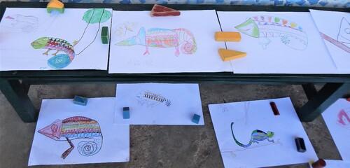 dessins caméléons