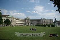Le coeur de Vienne 1