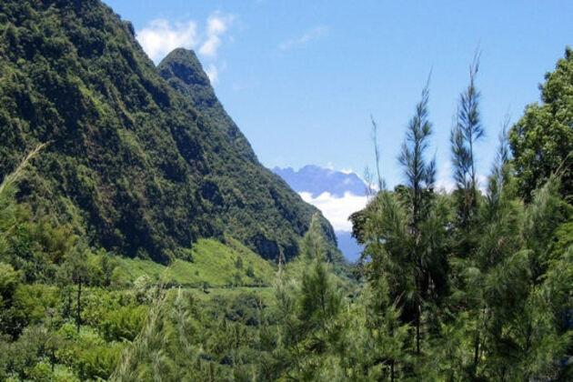 Mes vacances à La Réunion