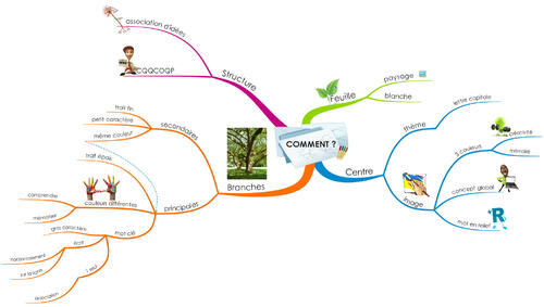 Mind mapping (suite)