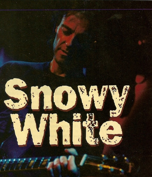Sowy white