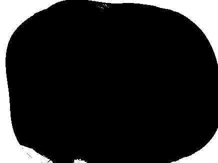 tube disney noel