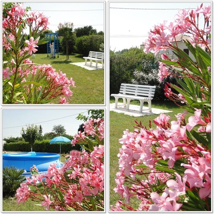 Jardin en habit dété (2 sur 2)