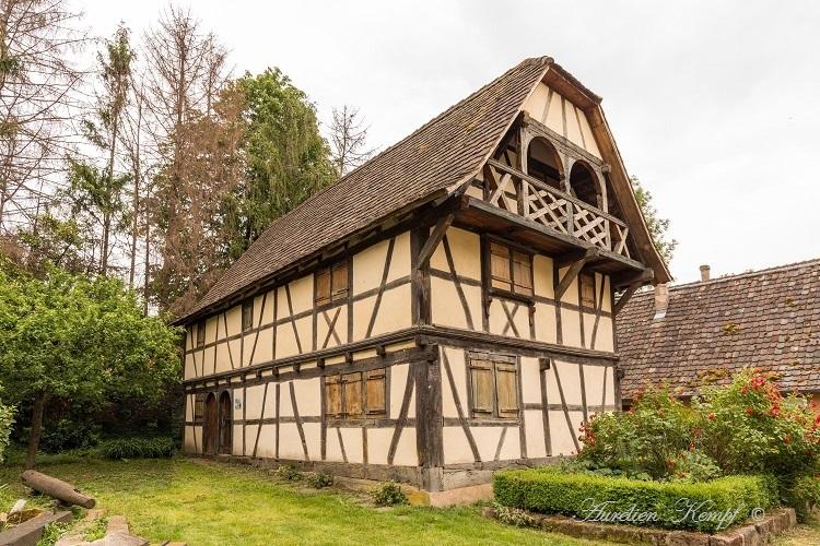 Reichstett (67) : Parc de la Maison Alsacienne 3/3