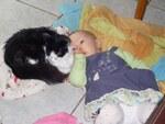 Il y a toujours un animal à aimer.
