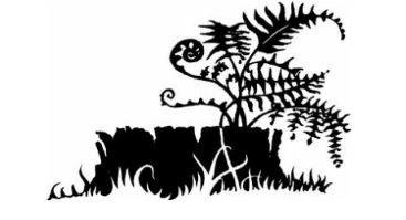 Les neuf vies d'Étoile du Tigre : le choix du Clan des Étoiles
