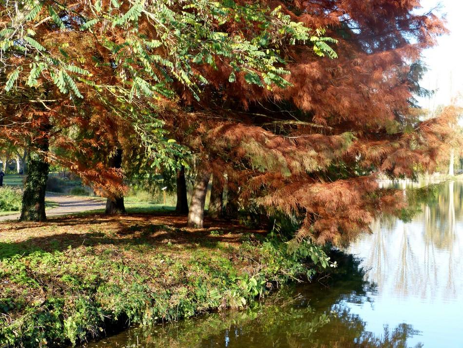 Il fait toujours beau en Picardie !
