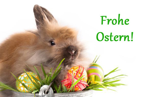 """Résultat de recherche d'images pour """"oster hase"""""""