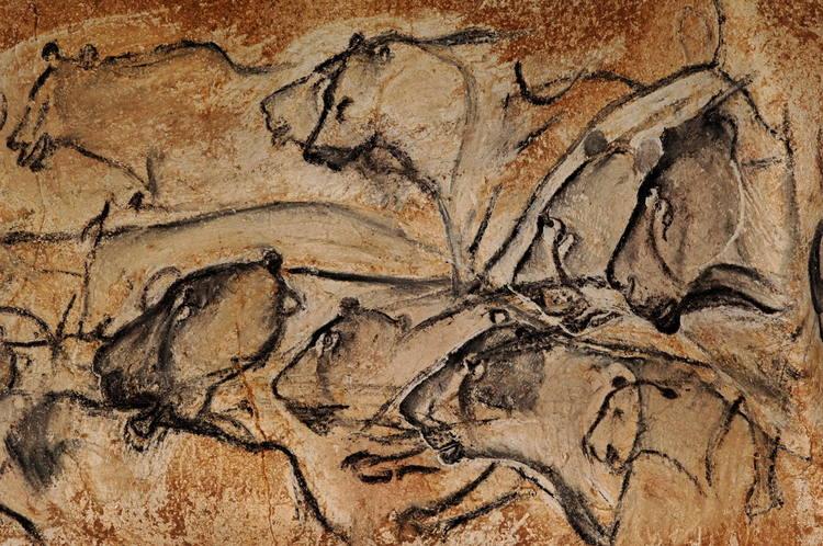 Découvrir la grotte Chauvet