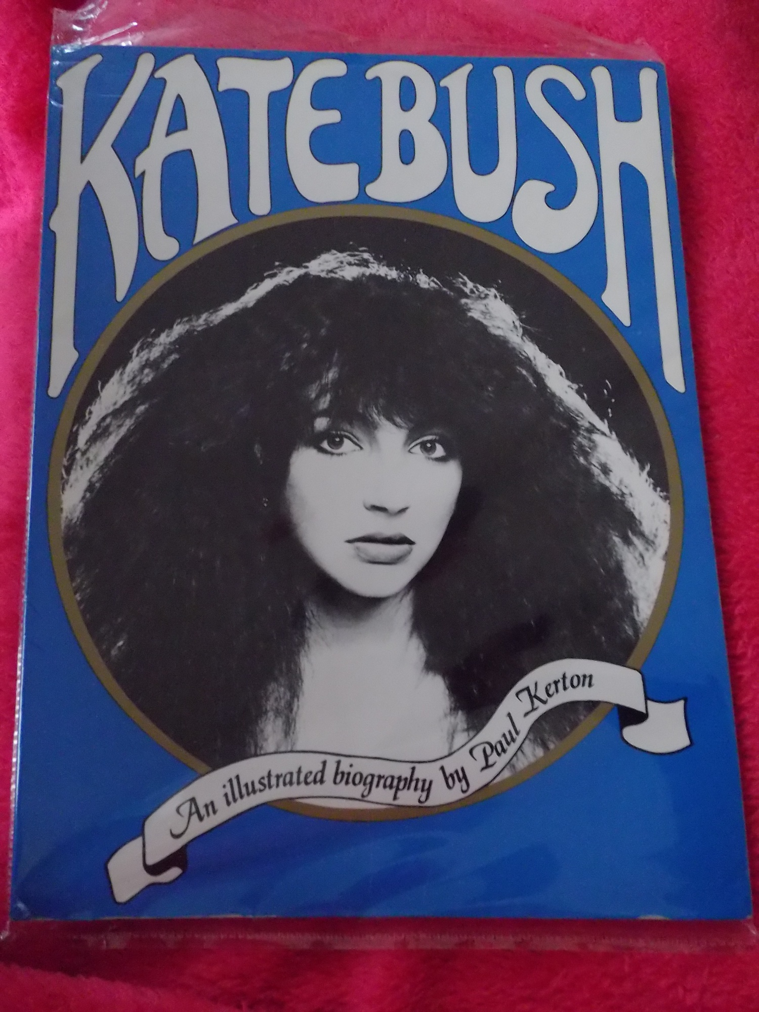 Les livres sur Kate  YjgAh9idRbpQV7kslp8lxAZ-bfY