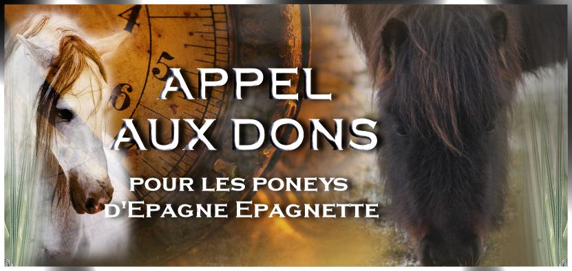 Poneys...  19/03/13