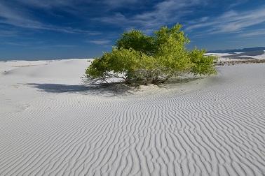 Un parc de sable blanc ...