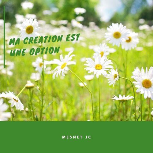 MA création est une option