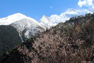 Montée vers les Annapurnas 2