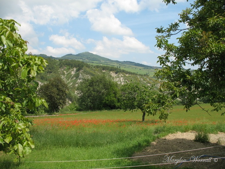 Italie : Balade dans la campagne