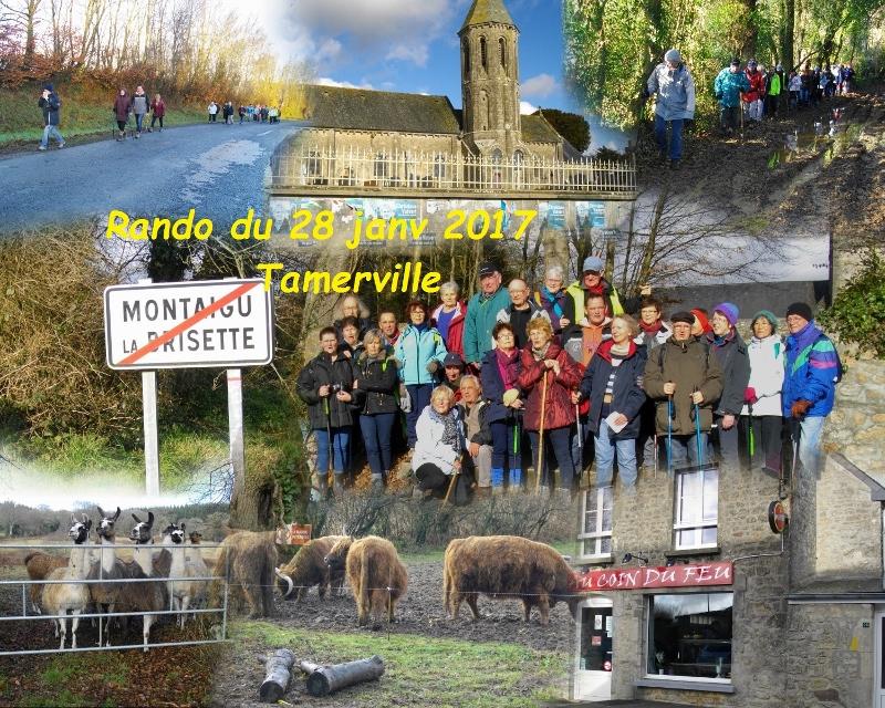Montaigu-la-Brisette