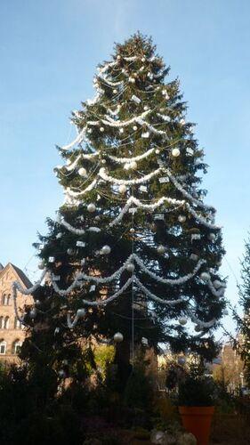 Metz fête la naissance du Christ