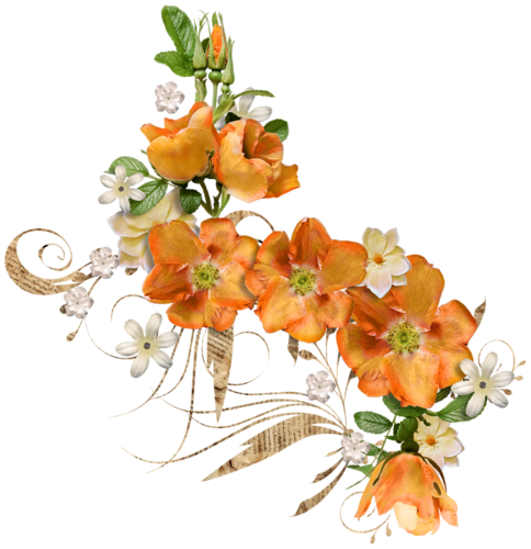 Ornements Floraux Série 42