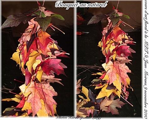 2010 09 11 MPT Bouquet au naturel (feuille)