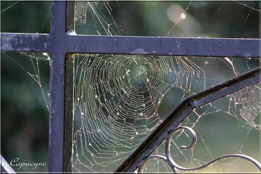 Le vitrail de Véronique Moret