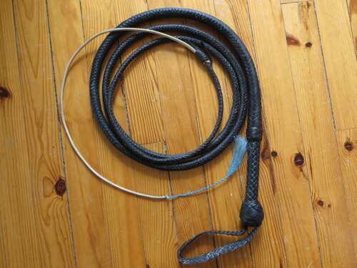 10ft black indy bullwhip (suite et fin)