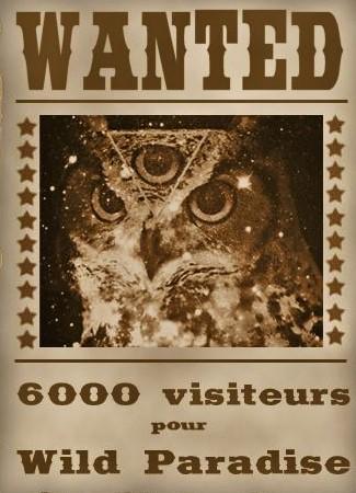 6000 visiteurs