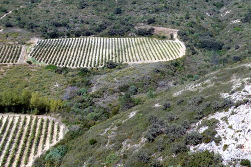 Cucugnan: portes & paysages