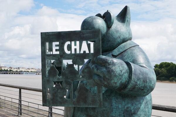 Le chat déambule sur les quais de Bordeaux (2)