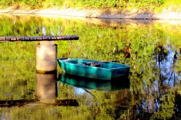 y08 - Rond dans l'eau