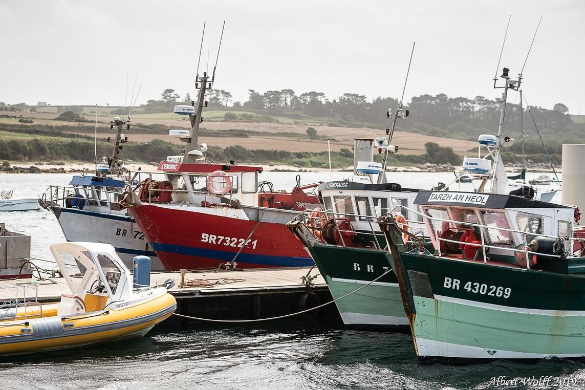 Finistère 2019 : vive la flotte....