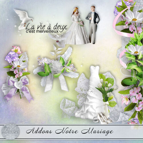 Notre Mariage Addons