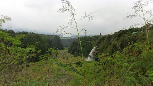Le Bras de la Plaine en aval du Sentier la Corde
