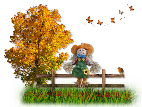 Barrière en automne
