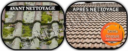 Nettoyage gouttière et couverture de toit
