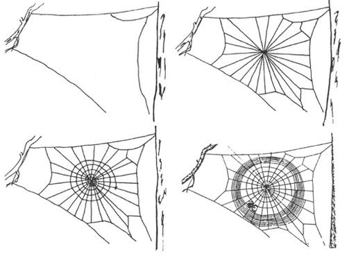 Le grand Almanach de la France : Le fil d'araignée