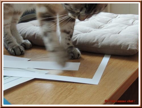 Des p'tits bouts d'papier !