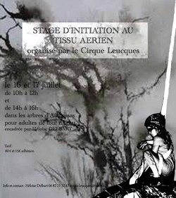 stage adulte