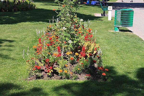 les jardins du front de mer de Royan -25-