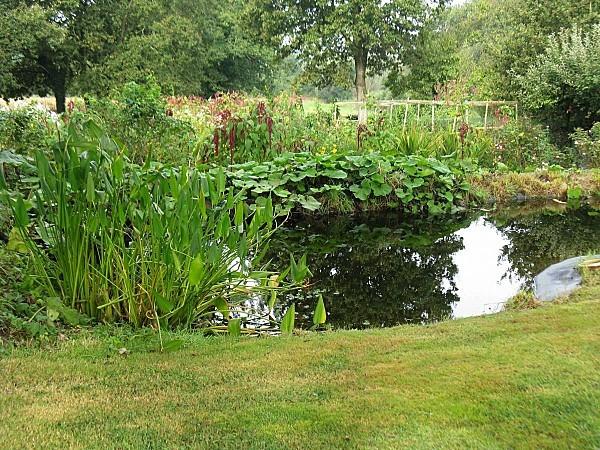 Jardin-de-Briere--22-09-12IMG_0866.JPG