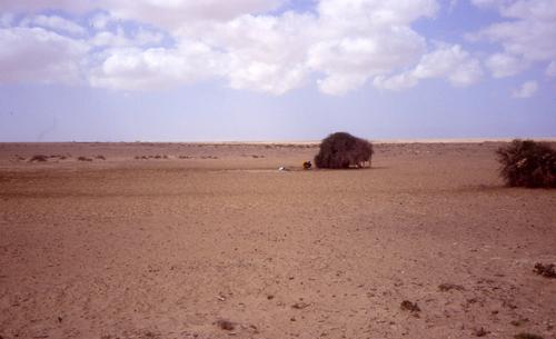 Le Sahara Marocain du sable et encore du sable !