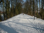 Promenade de l'ancien chemin de fer que je fais pour aller faire mes courses ce16 janvier 2013