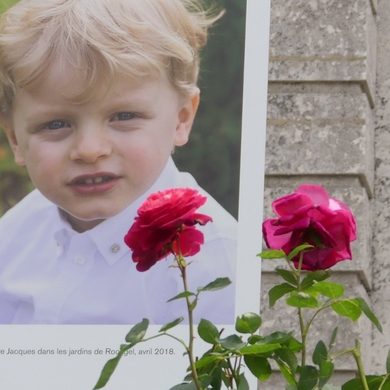 Les Journées de la Rose de l'abbaye de Chaalis : un jour mon prince viendra...