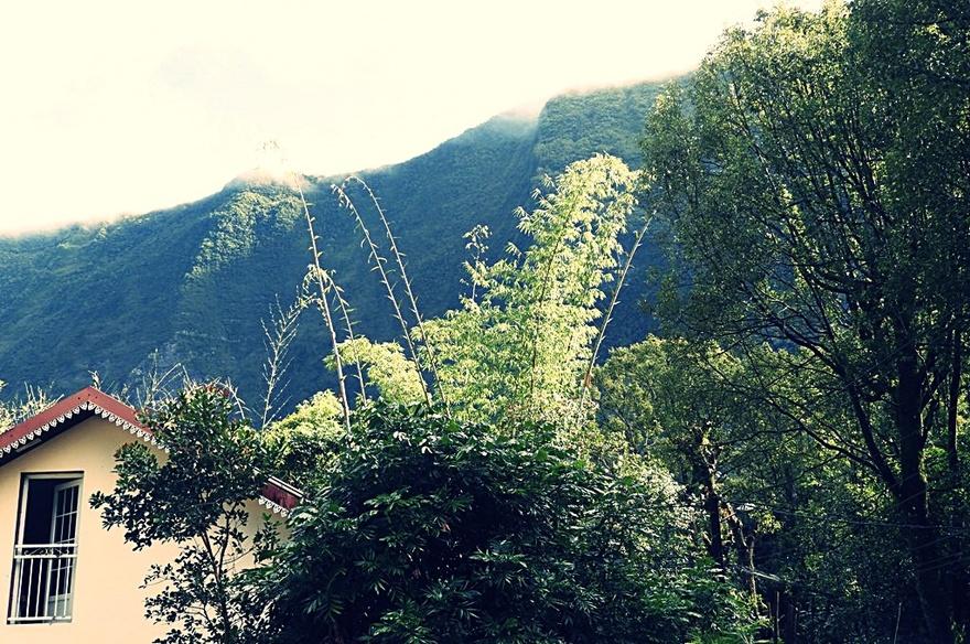 3/1/19 : Salazie à la Réunion (1)
