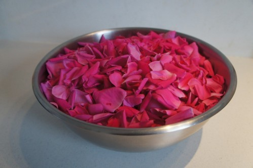 Fabrication sirop de roses (4)