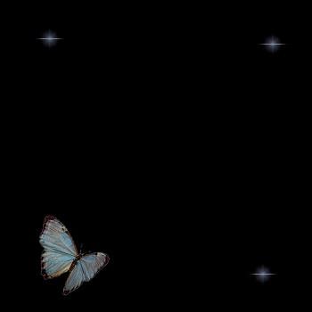 Fond de blog Papillons