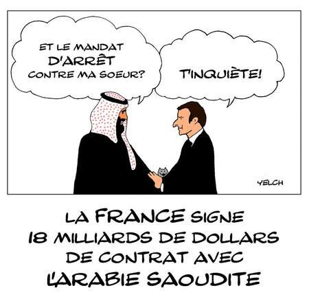 Sur le net Macron et les élus en voient de toutes les couleurs!