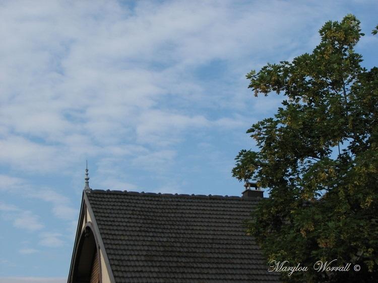 Ciel d'Alsace 370